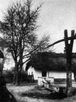 19. sz. közepén épült parasztház, Ady Endre szülőháza (Érmindszent, v. Szilágy m.)