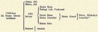 1763-ban Id. Szász István örökösei János, def., Mária, def. 1791 István Sámuel András Szász Kata Rettegi Litt. Farkasné Szász Ilona Sánta Józsefné Szász Sára Sánta József Mária, Miskolczi Józsefné